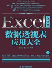 Excel2010数据透视表应用大全