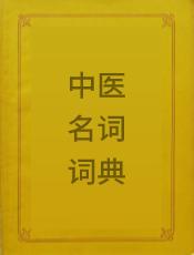 中医名词词典