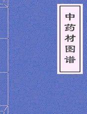 中药材图谱